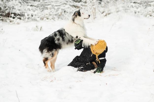 Petit garçon jouant avec un berger australien dans la forêt d'hiver.