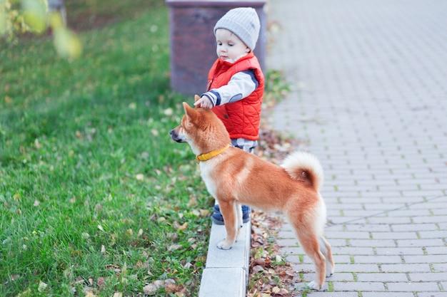 Petit garçon jouant avec son chien rouge sur la pelouse du parc en automne. le chiot et l'enfant shiba inu sont les meilleurs amis, le bonheur et le concept d'enfance insouciant