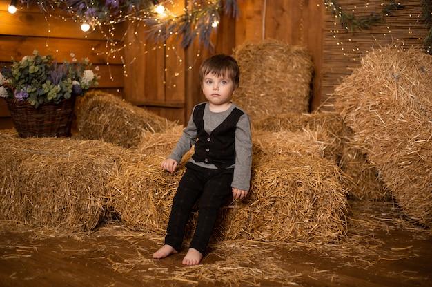 Petit garçon, jouer, dans, gerbes paille, dans, ferme, campagne, agriculture