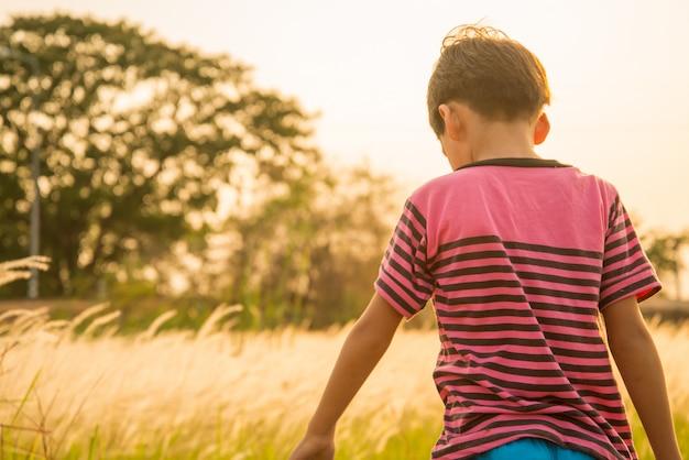 Petit garçon marchant sur le coucher du soleil avec champ d'herbes dorées