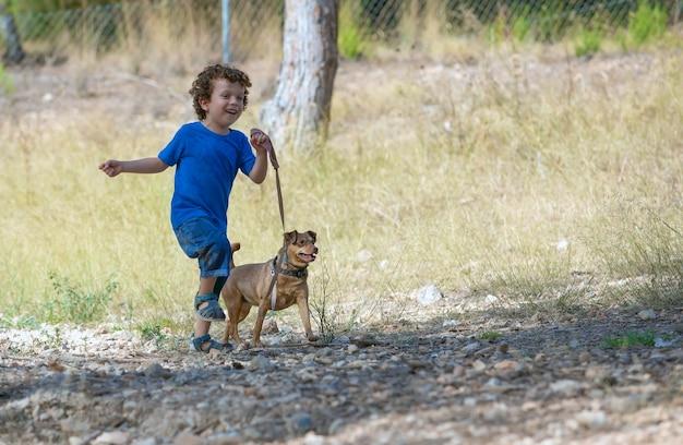 Petit garçon marchant et jouant avec son petit chien en forêt