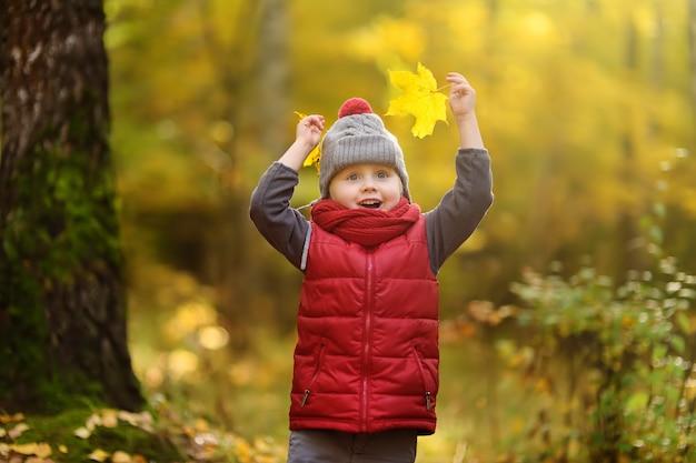 Petit garçon pendant une promenade dans la forêt au jour d'automne ensoleillé