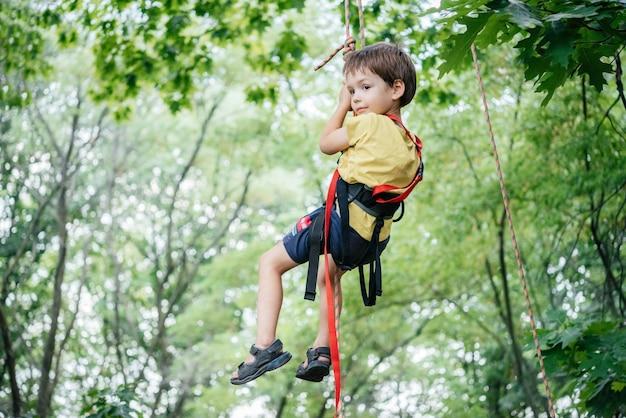 Petit garçon en selle d'escalade grimpant à la corde dans la canopée de l'arbre avec équipement alpin et équipement d'escalade, activités estivales en plein air pour les enfants