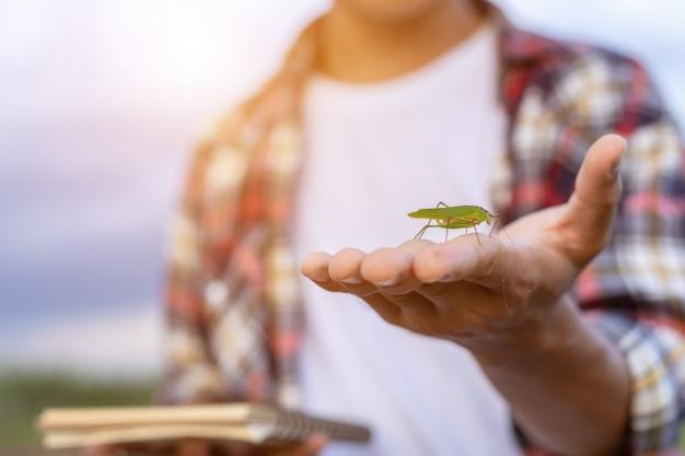 Petit insecte vert sur la main du fermier et montrant un insecte encore en vie dans sa ferme