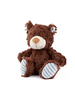 Petit ours brun moelleux sur fond blanc