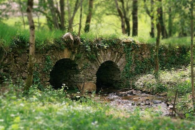 Petit pont sur une rivière