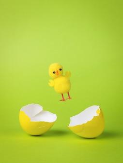 Un petit poulet jaune s'envole d'un œuf cassé jaune.
