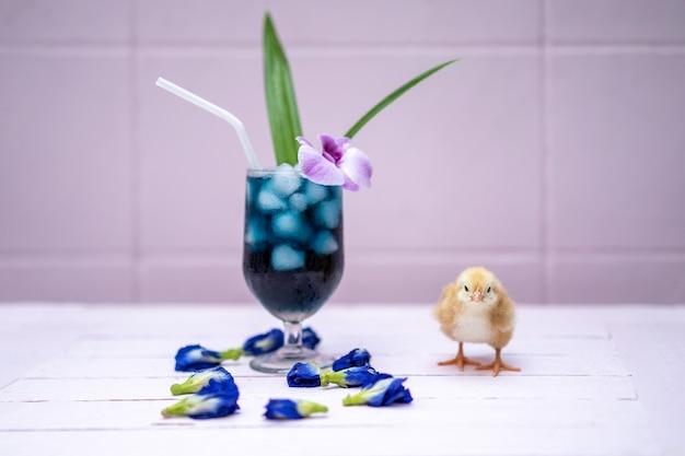 Un petit poussin jaune avec de l'eau de pois papillon et de la glace dans un verre à champagne est décoré par une orchidée et une feuille de pandan. il est montré et affiché sur une table en bois rose pastel devant le mur de ciment.