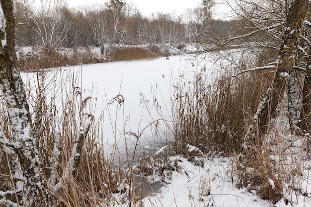 Petit réservoir gelé pendant les gelées hivernales, ainsi que des arbres à feuilles caduques poussant près de l'étang