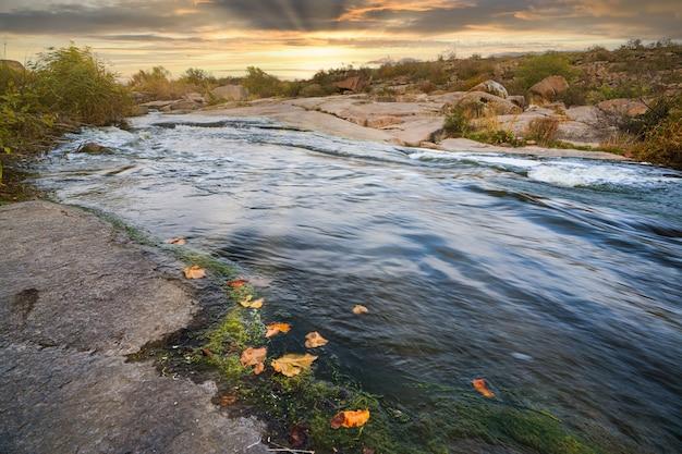 Un petit ruisseau brillant coule parmi les pierres lisses humides et sombres