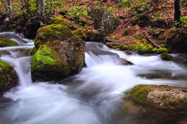 Un petit ruisseau coule avec une cascade et des pierres moussues autour