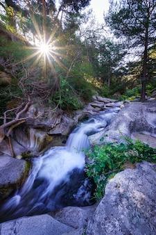 Petit ruisseau entre les rochers avec la lumière du soleil sortant entre les arbres.