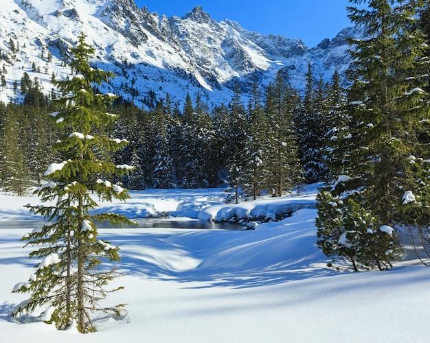 Petit ruisseau de montagne et forêt de sapins sur une pente rocheuse enneigée d'hiver.