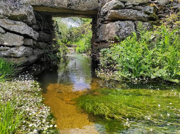 Petit ruisseau passant sous un vieux pont de pierre