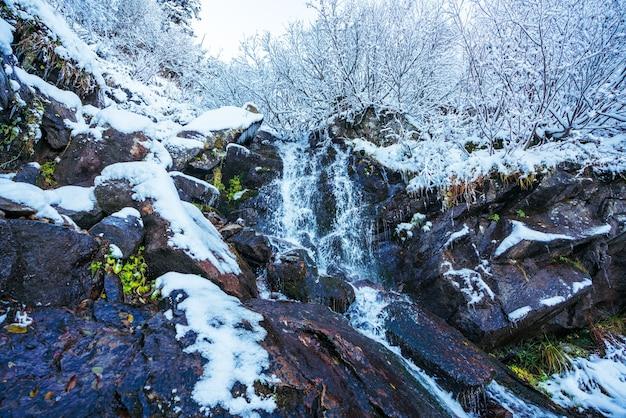 Petit ruisseau rapide parmi les petites pierres humides et la neige blanche et froide dans les montagnes pittoresques des carpates dans la belle ukraine et sa nature fantastique
