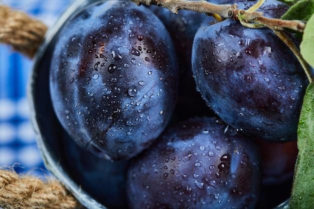 Petit seau de prunes de jardin sur une nappe bleue. photo de haute qualité