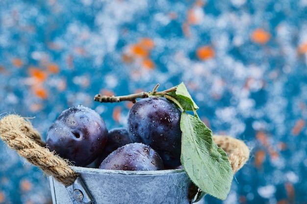 Petit seau de prunes mûres sur bleu.