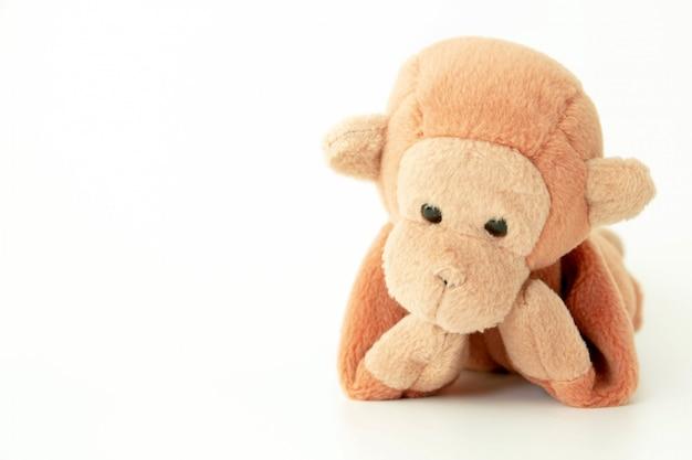 Petit singe marron sur fond blanc