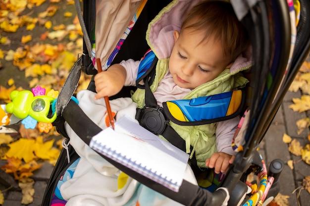 Petit tout-petit mignon dessine et s'assoit dans une poussette dans un parc en automne