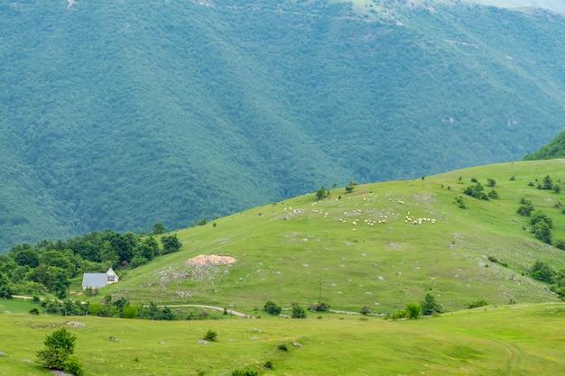 Un petit village est situé parmi les collines.