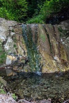 Une petite cascade au milieu d'une forêt
