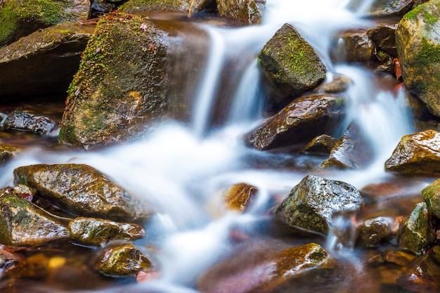Petite cascade avec de l'eau mousseuse et des pierres humides
