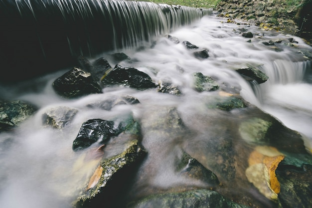Petite cascade avec feuillage