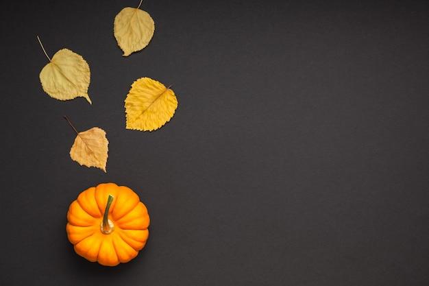 Petite citrouille orange feuilles fond de papier noir