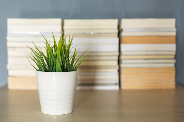 Petite décoration végétale avant fond de pile de livre flou sur 24