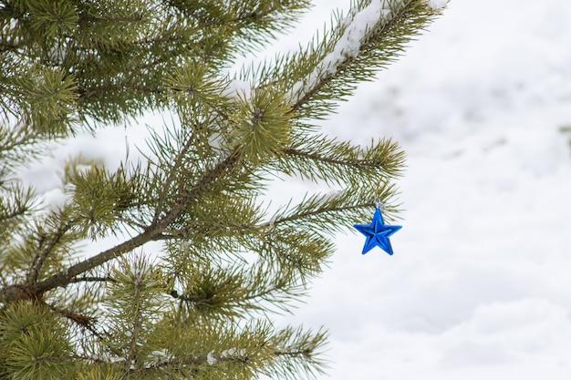 Une petite étoile bleue en verre du nouvel an est suspendue à une branche de pin dans la rue en hiver