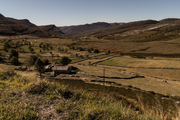 Petite ferme avec des champs verts