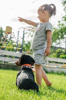 Petite fille 3-4 reculer et pointer son doigt vers quelque chose à chien teckel brun noir en collier, sur l'herbe verte