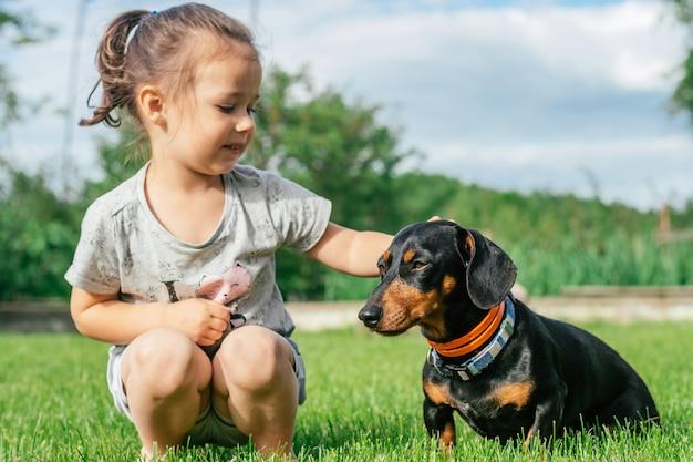 Petite fille 3-4 s'asseoir et pet chien teckel brun noir en collier, sur l'herbe verte
