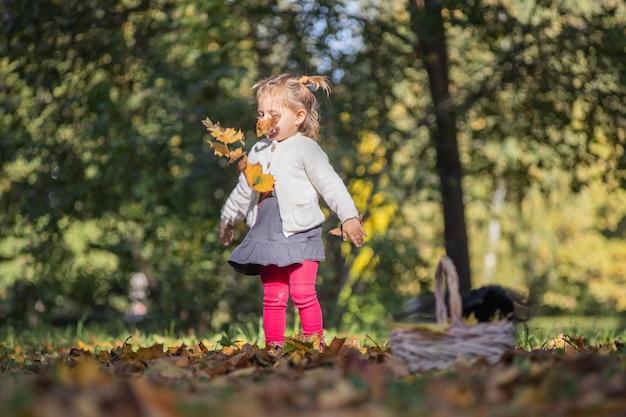 Petite fille adorable d'enfant en bas âge jouant dans les feuilles brûlantes en parc d'automne un jour ensoleillé