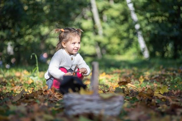Petite fille adorable s'asseyant dans l'herbe dans la forêt d'automne sur le fond du panier dedans