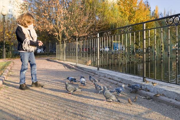 Petite fille, alimentation, pigeons, dans, ensoleillé, automne, parc