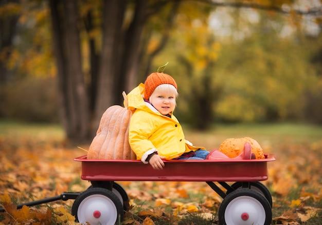 Petite fille assise dans un chariot à citrouilles en automne parc
