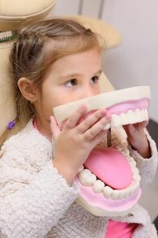 Petite fille assise dans un fauteuil dentaire avec mâchoire artificielle dans les mains