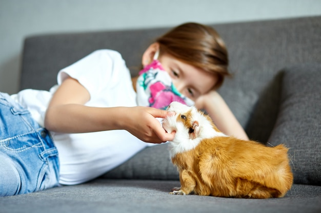 Petite fille au masque jouant avec le cochon d'inde rouge, cavy à la maison au canapé en quarantaine.
