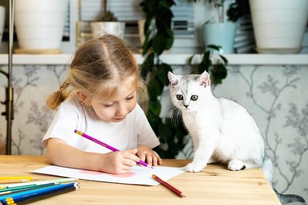 Une petite fille blonde est assise à une table, dessinant. un chaton écossais blanc est assis à côté