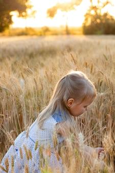 Petite fille blonde mignonne dans la robe bleue dans le champ de blé au coucher du soleil déchire des épillets de blé