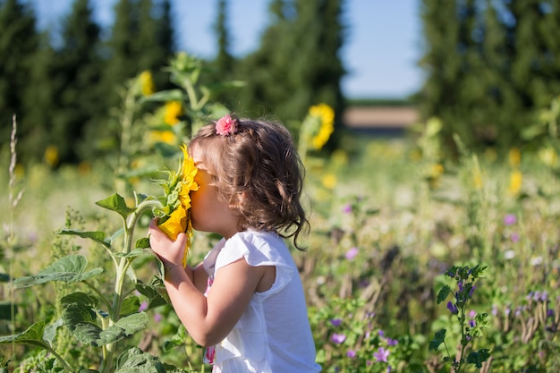 Une petite fille dans un champ de tournesols