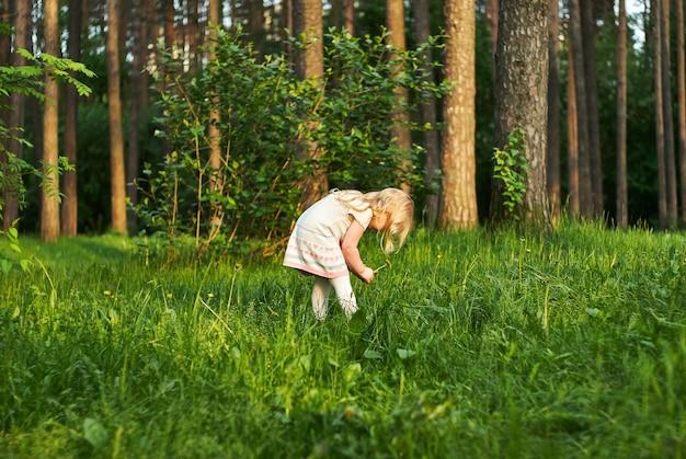 La petite fille dans une clairière de forêt dans la surprise regarde des fleurs de pissenlit
