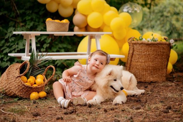 Petite fille embrasse un chien samoyède