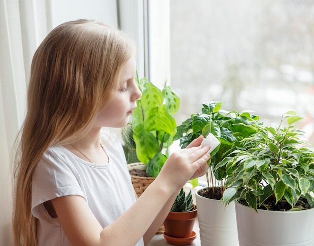 Petite fille essuie le feuillage des plantes d'intérieur, soin des plantes d'intérieur
