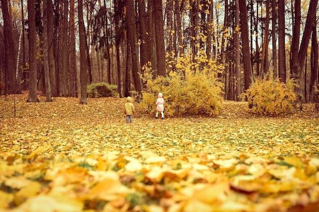 La petite fille et le garçon de la fratrie se promènent dans le parc en automne et étudient la nature de l'environnement. explorer le monde. vue arrière et arrière