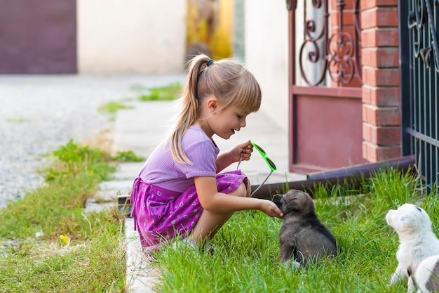 Petite fille jouant avec des chiots sur l'herbe verte