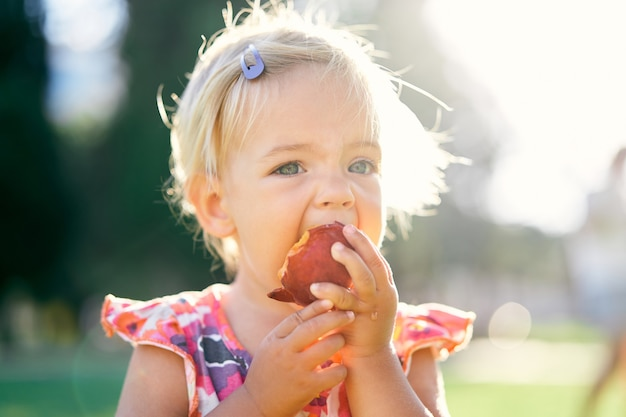 La petite fille mange une pêche sur une pelouse verte la tenant par le portrait de mains