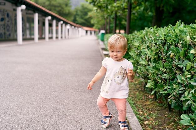 La petite fille marche sur une route goudronnée devant des buissons de magnolia dans un parc verdoyant