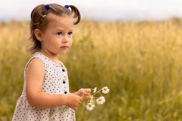 Petite fille mignonne 1-3 dans une robe légère se tient dans le domaine des épillets de seigle avec un bouquet de marguerites en été